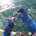 【釣り方・道具紹介】オフショアジギングで青物を釣るためのコツについて紹介します